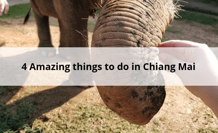 4 amazing things to do in Chiang Mai