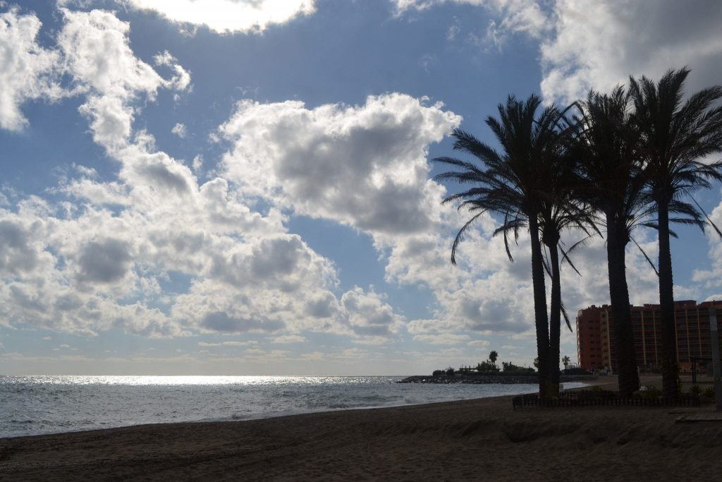 Palmtrees at the beach in Benalmadena