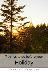 7 things to do before your holiday